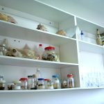 Laboratório de Ciências 03