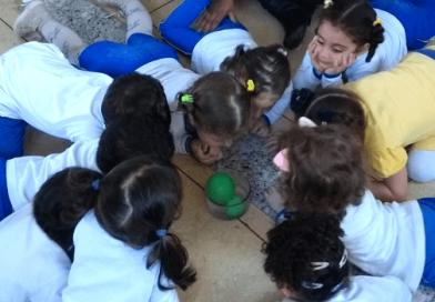 Aula de Ciências na Educação Infantil